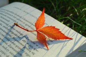 Na zdjęciu fragment książki a na nim pomarańczowy jesienny liść.