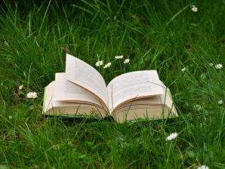 Na zdjęciu otwarta książka na zielonej trawie wśród białych stokrotek